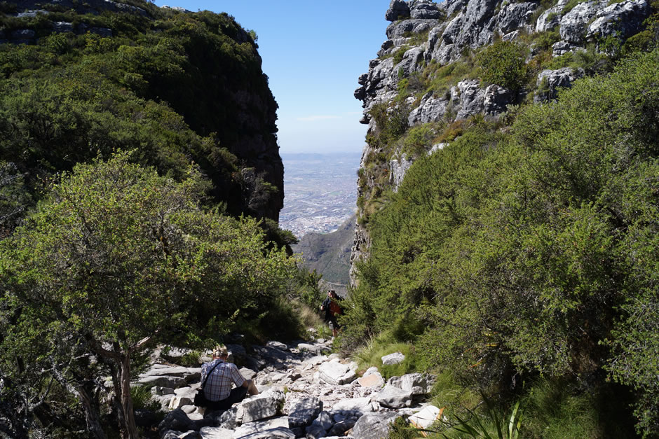 quinns-holiday-gallery-table-mountain-walk